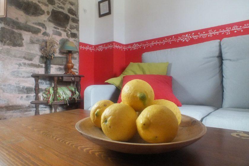detalle limones apartamento